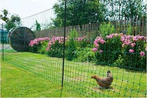 Créer un enclos grillagé avec un filet pour poules