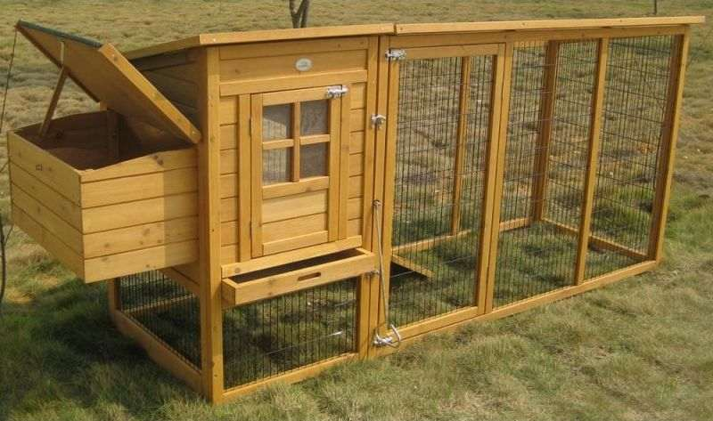 Poulailler avec enclos sécurisé pour poules