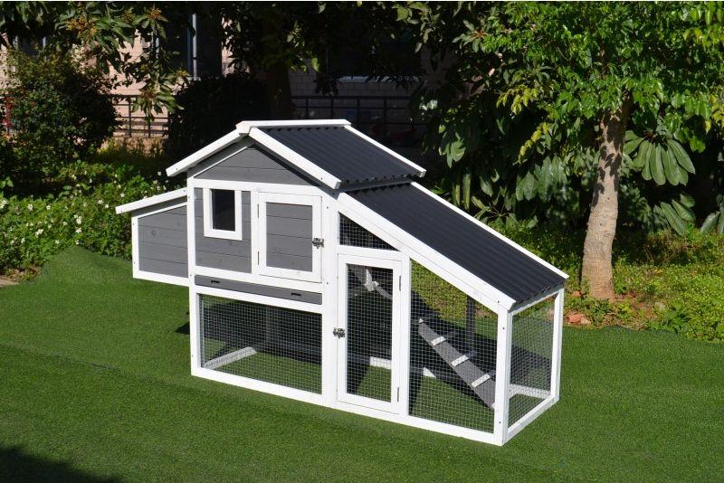 Poulailler avec toit plastique