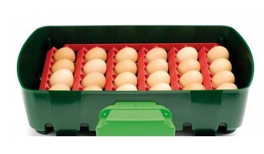 Conseils et avis pour choisir couveuse à oeufs automatiques