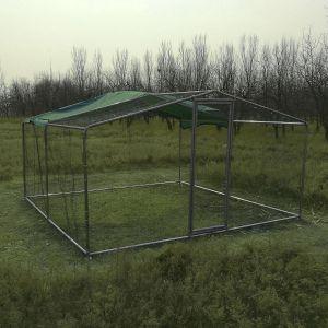 grand-enclos-pour-poules-tubes-renforcés-38mm-4x4x2.25m