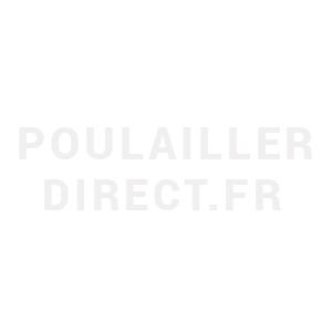 Poulailler-enclos-Faverolles-XL-gris-8-à-10-poules