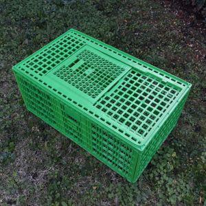 Cage transport grandes volailles 96x57x42cm 2 portes verte