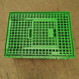 Cage-de-transport-poules-77x57x27cm-verte-vue-dessus-fermée