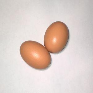 Faux-œufs-plastique-en-bois