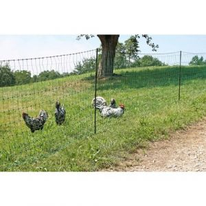 Filet poules 15m double pointe PoultryNet